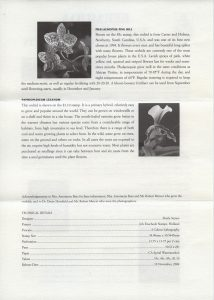 50th Anniversary of the Bermuda Orchid Society FDC liner reverse