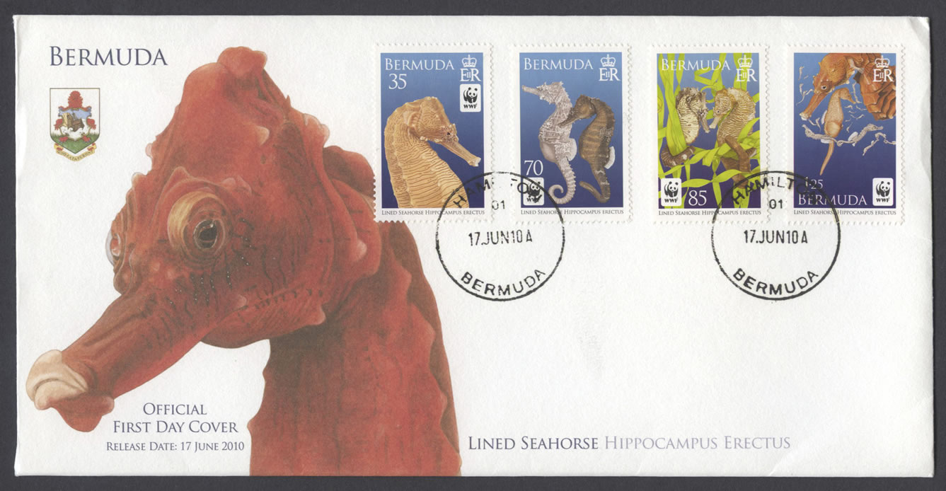 2010 Lined Seahorse FDC