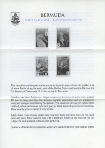 2010 Lined Seahorse liner FDC